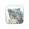Apple Mac OS X Snow Leopard for Mac last ned