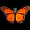 Butterfly On Desktop last ned