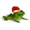 Christmas Super Frog last ned